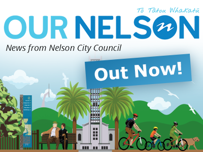 our nelson promo generic